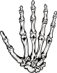 https://images.inksoft.com/images/clipart/thumb/gallery1841/BONE_09.EPS.png