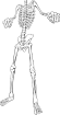 https://images.inksoft.com/images/clipart/thumb/gallery1841/BONE_12.EPS.png