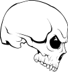 https://images.inksoft.com/images/clipart/thumb/gallery1841/SKULL_62.EPS.png