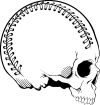 https://images.inksoft.com/images/clipart/thumb/gallery1841/SPORT_SKULL_03.EPS.png