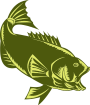 https://images.inksoft.com/images/clipart/thumb/gallery1909/BASS_SIDE.png