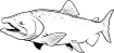 https://images.inksoft.com/images/clipart/thumb/gallery1909/KINGSALMON01NC2BW_(CONVERTED).EPS.png
