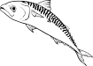 https://images.inksoft.com/images/clipart/thumb/gallery1909/MACKEREL01NC2BW_(CONVERTED).EPS.png