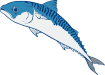 https://images.inksoft.com/images/clipart/thumb/gallery1909/MACKEREL01NC2CLR_(CONVERTED).EPS.png