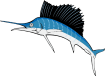 https://images.inksoft.com/images/clipart/thumb/gallery1909/SAILFISH01NC2CLR_(CONVERTED).EPS.png