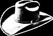 https://images.inksoft.com/images/clipart/thumb/gallery2183/CAT_3-COWBOY-HAT-B.png
