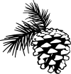 https://images.inksoft.com/images/clipart/thumb/gallery2189/PINE_CONE_BW.png