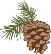https://images.inksoft.com/images/clipart/thumb/gallery2189/PINE_CONE_C.png